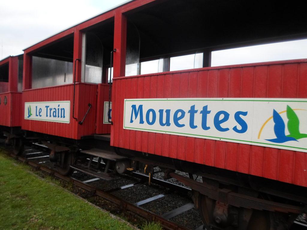 Train des Mouettes à Saujon, balade insolite!