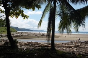 Parque National Marino Ballena au Costa Rica