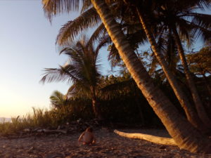 Santa Teresa Playa Hermosa