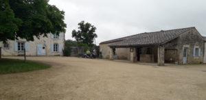 Asinerie du Baudet du Poitou à Dompierre-sur-Gironde Charente-Maritime