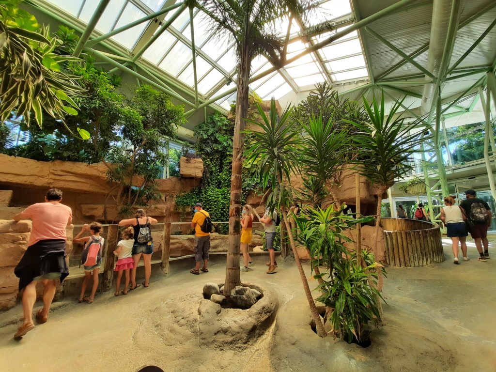 Vivarium du Zoo de la Palmyre aux Mathes La Palmyre